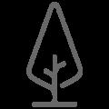 tree-icon-120x120